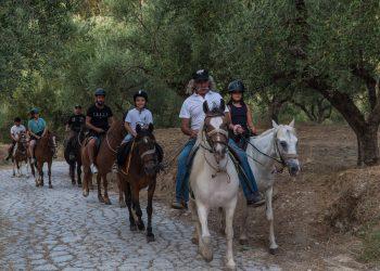 , Horse Riding Zakynthos Zante Yiannis Horses